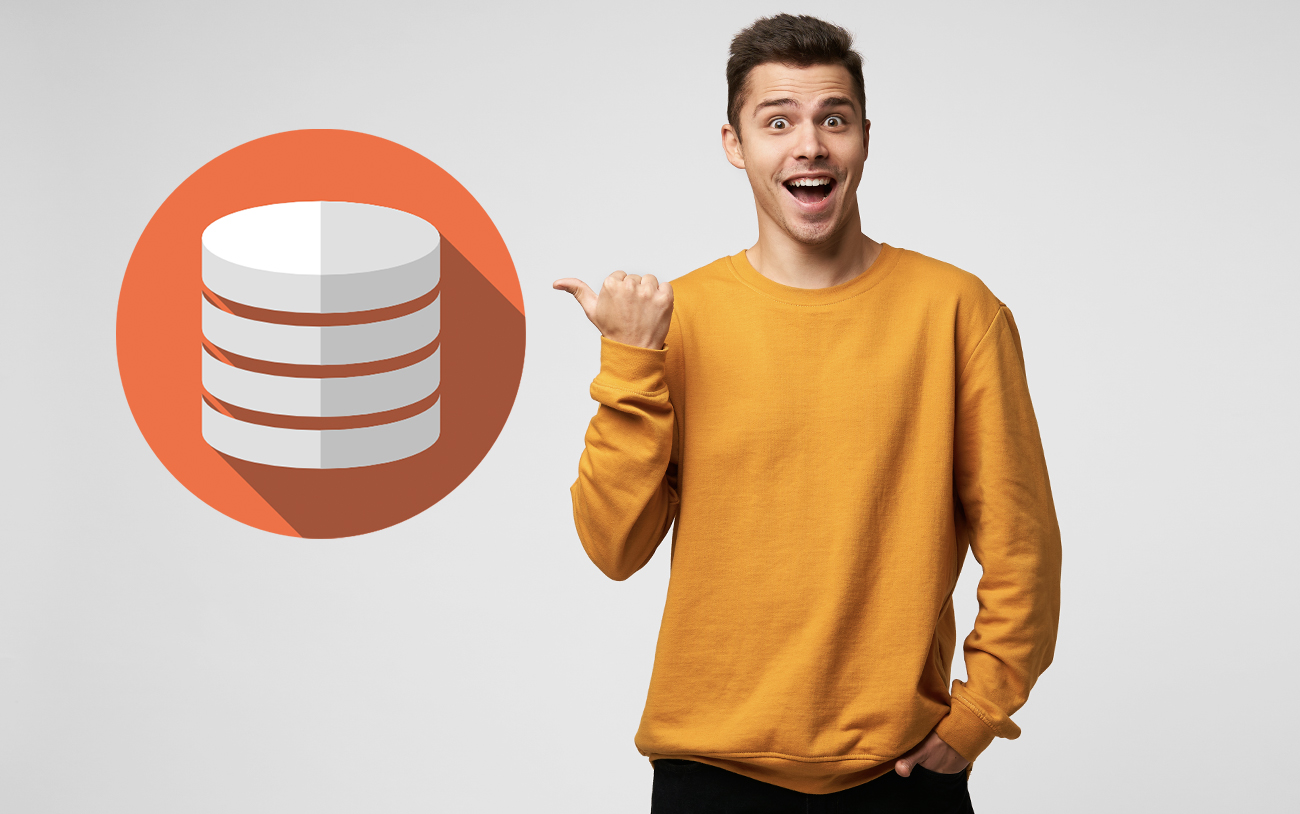 Why Should You Go for a Custom Database